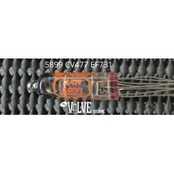 5899 CV477 EF731